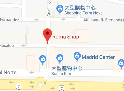 Roma Informatica