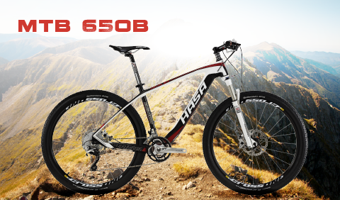 Mountain Bike 650B (27.5)